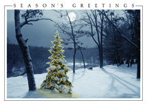 All is Bright Christmas Cards